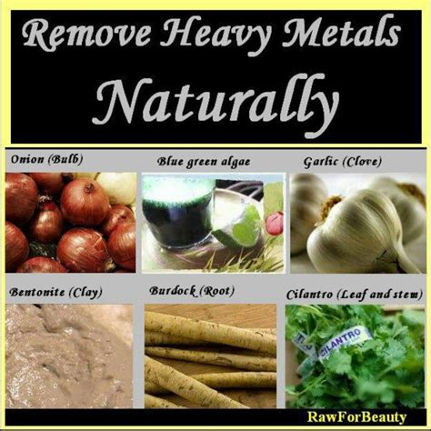 Best Foods For Detoxing Heavy Metals by Heavy Metal Detox Heal