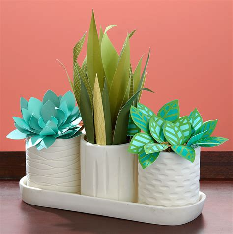 Which Plant Is Used To Make Paper - trend alert paper plants are in make it from your