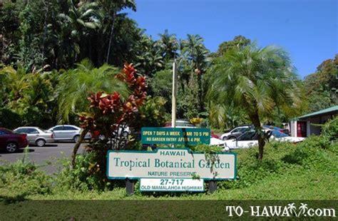 Hilo Botanical Garden Hawaii Tropical Botanical Garden Big Island