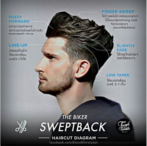 mens haircuts diagrams 17 best images about short hair ideas on pinterest
