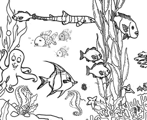 coloring pages of reef fish great barrier reef coloring pages coloring home