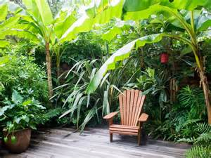 tropical garden retreat hgtv