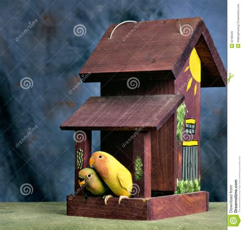 love birds house music lovebirds on the porch of their house stock image image