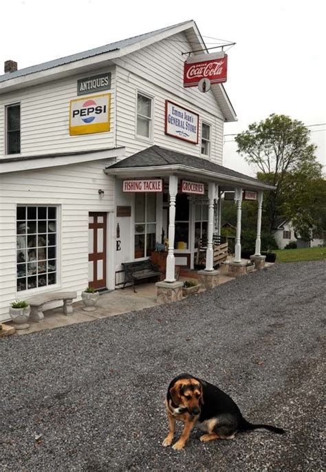 boat store troy mi 17 best images about west virginia on pinterest devil