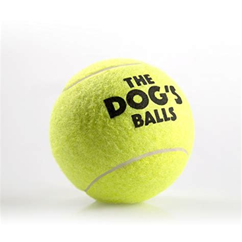 tennis balls for dogs the dogs balls 12 strong tennis balls for play