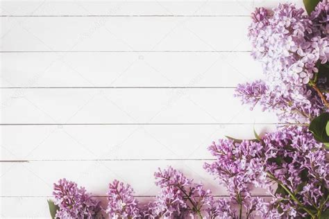 Does A Card Show Up On A Background Check Lilac Flowers On White Wood Stock Photo 169 Vladislavnosick 116164530