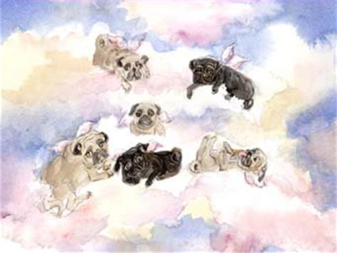 heavenly pugs of pug prints by nancy berry