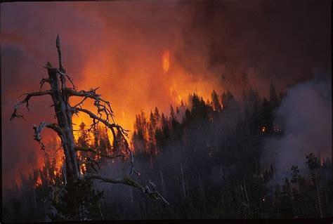 Mitigasi Kesiapsiagaan Bencana Banjir Dan Kebakaran bencana alam mitigasi bencana alam