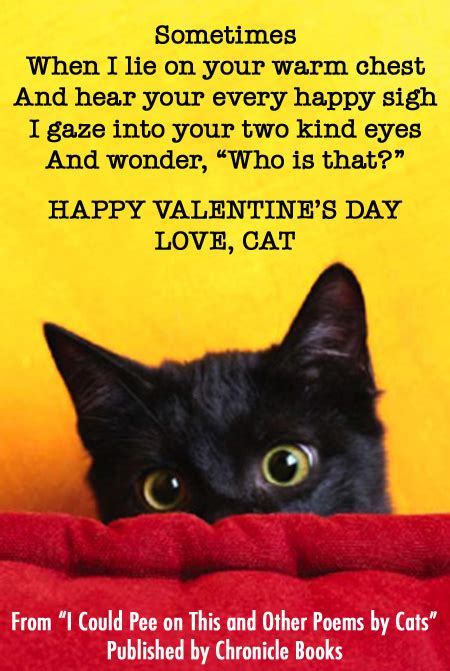 happy valentine s day from cats medium large