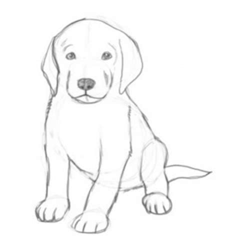 Home Design App Free download how to draw cute puppies for android by top apps