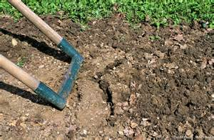 b 234 cher ou d 233 compacter la terre d 233 tente jardin