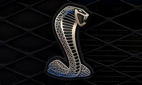 logo ford mustang shelby modern car