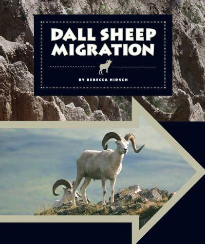 dall sheep books dall sheep migration animal migrations