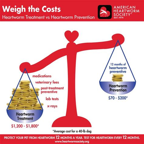 weigh the costs heartworm prevention vs heartworm