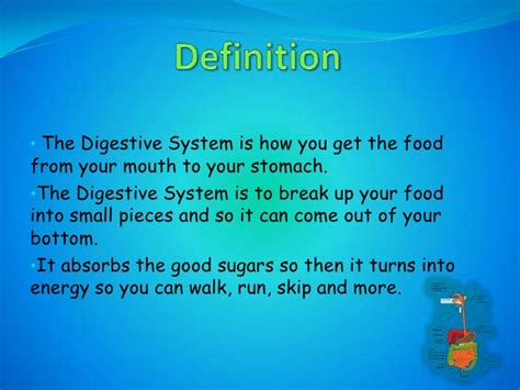define systemize digestive system definition applecool info