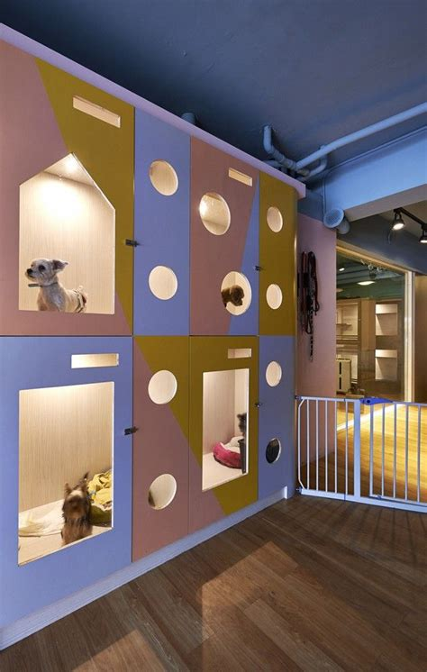 puppy hotel 25 best ideas about hotel on boarding hotels that take dogs and