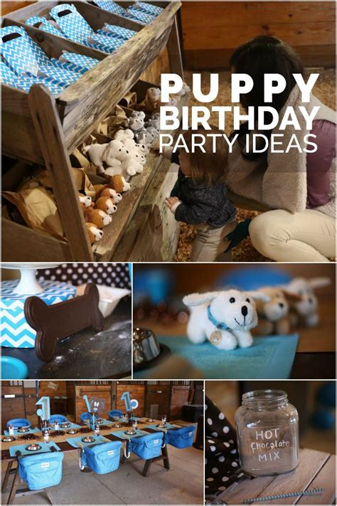 Puppy Themed  Ee  Birthday Ee    Ee  Party Ee    Ee  Ideas Ee   For Boys Spaceships