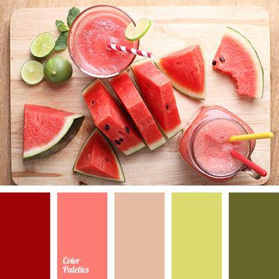 what color is watermelon color of watermelon flesh color palette ideas