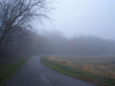 Foggy S   life is good a foggy day