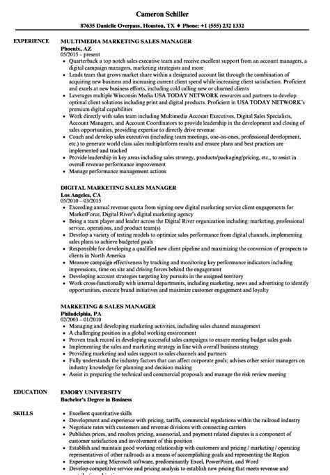 sales resumes professional sales manager resume 43 sales resume