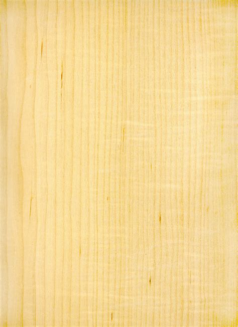 maple woodworking maple wood texture ma