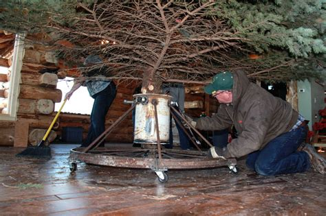 diy heavy duty christmas tree stands o tree coteau des prairies lodge