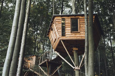 treehouse hotel gorgeous robin s nest treehouse hotel immerses you in