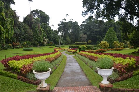 Peradeniya Botanical Gardens Kandy Sri Lanka Why Waste Botanical Gardens Kandy