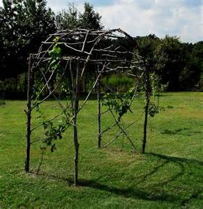 Garden Vine Trellis Grape Trellis From Branches Gardening