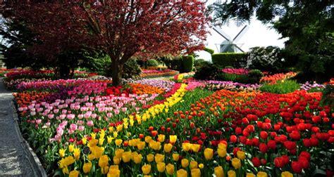 beautiful gardens  washington