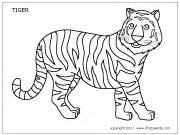 Tiger Template Printable by Tiger Printable Templates Coloring Pages