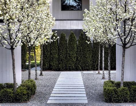 Trees For Gardens Ideas Garden Design Ideas The Best Trees For Small Gardens Interior Design Ideas Ofdesign