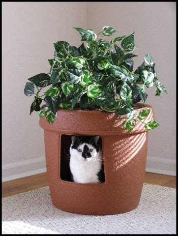 fake plant topper  hidden litter box cat litter box