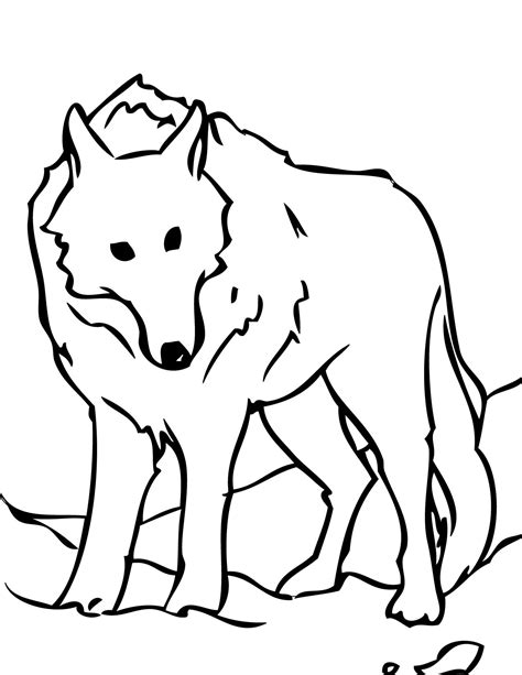 wolf face colouring pages clipart best
