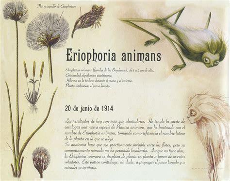 el herbario de las hadas ilustraciones de benjamin lacombe arte