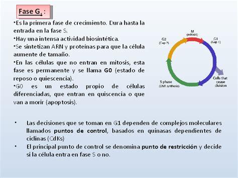 aumento de la pension en colombia para 2016 newhairstylesformen2014 aumento de la pension en colombia para el 2016 de cuanto
