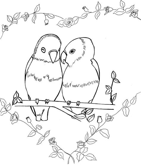 coloring pictures of lovebirds bird colouring book x2 standingoutinmyfield