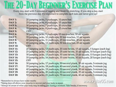 exercise plan for beginners at home the 20 day beginner s exercise plan new to the gym no