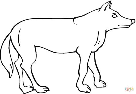 coyote coloring page coyote 8 coloring page free printable coloring pages