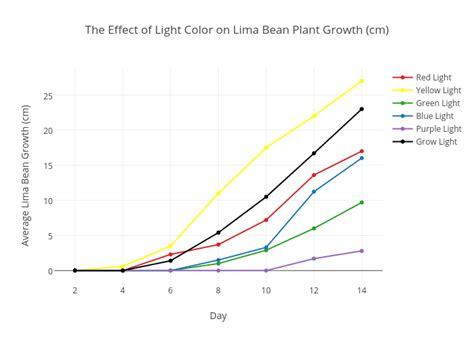 purple light plant growth the effect of light color on lima bean plant growth cm
