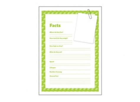 fact card template primary 1 giants of the animal kingdom blank fact cards
