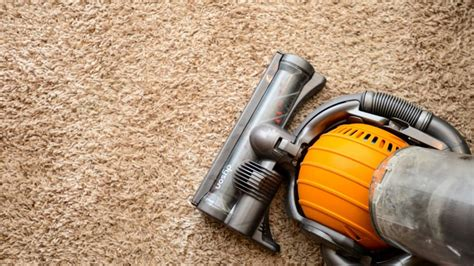 how to vacuum carpet how to set your vacuum to the right height angie s list