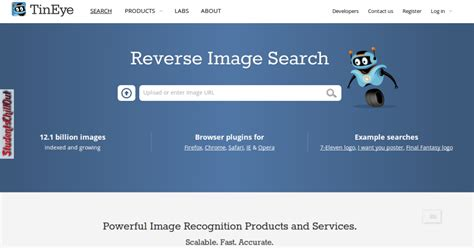 Search Using Picture Image Search Using Tineye Studentschillout