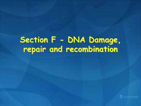 section f ppt section f dna damage repair and recombination