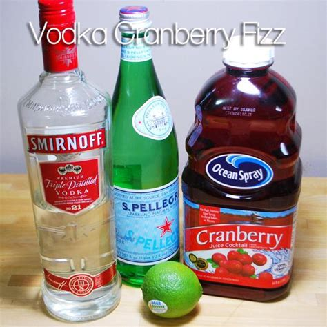 vodka soda 17 best ideas about low calorie vodka drinks on pinterest