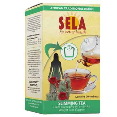 Everslim Tea Slimming 1 sela for better health slimming tea with hoodia gordonii