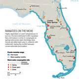 manatee florida map manatees