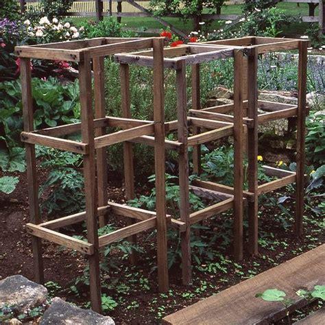tomato cages picmia