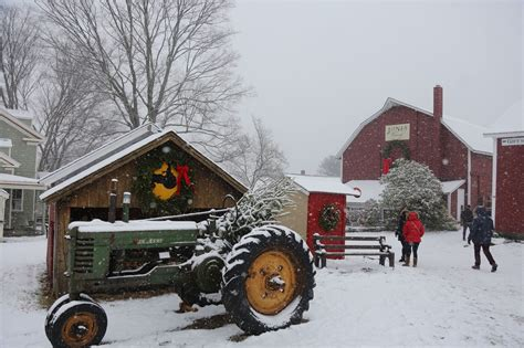 christmastree farms goodforkids ct seen tree shopping at jones family farms new register