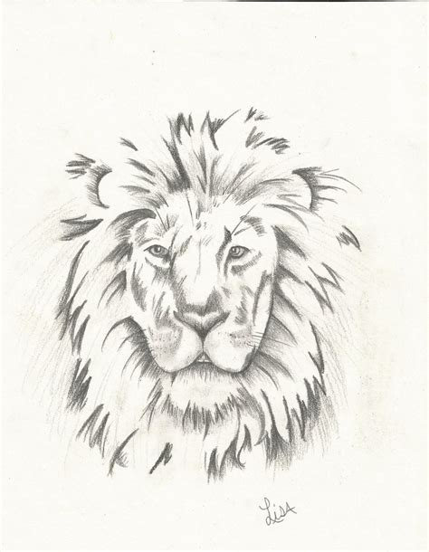lion tattoo drawing drawing in charcoal by lisam